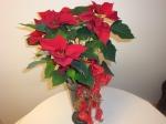 21.12.2013Deko Ideen für Weihnachten  Dekoration mit einem Weihnachtsstern