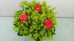 Floristik Sommer Blumenstrauß ❁ Deko Ideen mit Flora-Shop