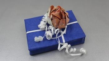 Geld falten ❁ Lotusblume aus Geldscheine basteln ❁ Deko Ideen mit Flora-Shop