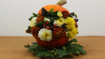 Herbstdeko mit Kürbis basteln ❁ Deko Ideen mit Flora-Shop