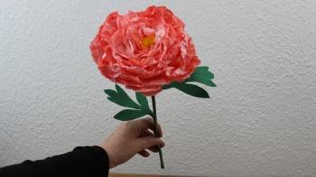 Papier Blumen basteln ❁ Pfingstrose ❁ Deko Ideen mit Flora-Shop