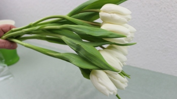 frühlingsdeko selber machen mit blumen vom diskaunter ❁ deko ideen mit flora-shop