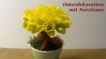 Osterdeko mit Osterglocken selber machen, als moderne Tischdekoration für Ostern